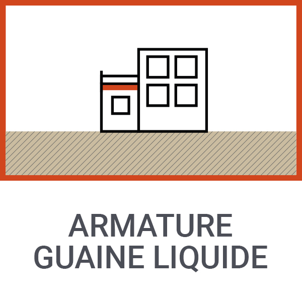Armature guaine liquide