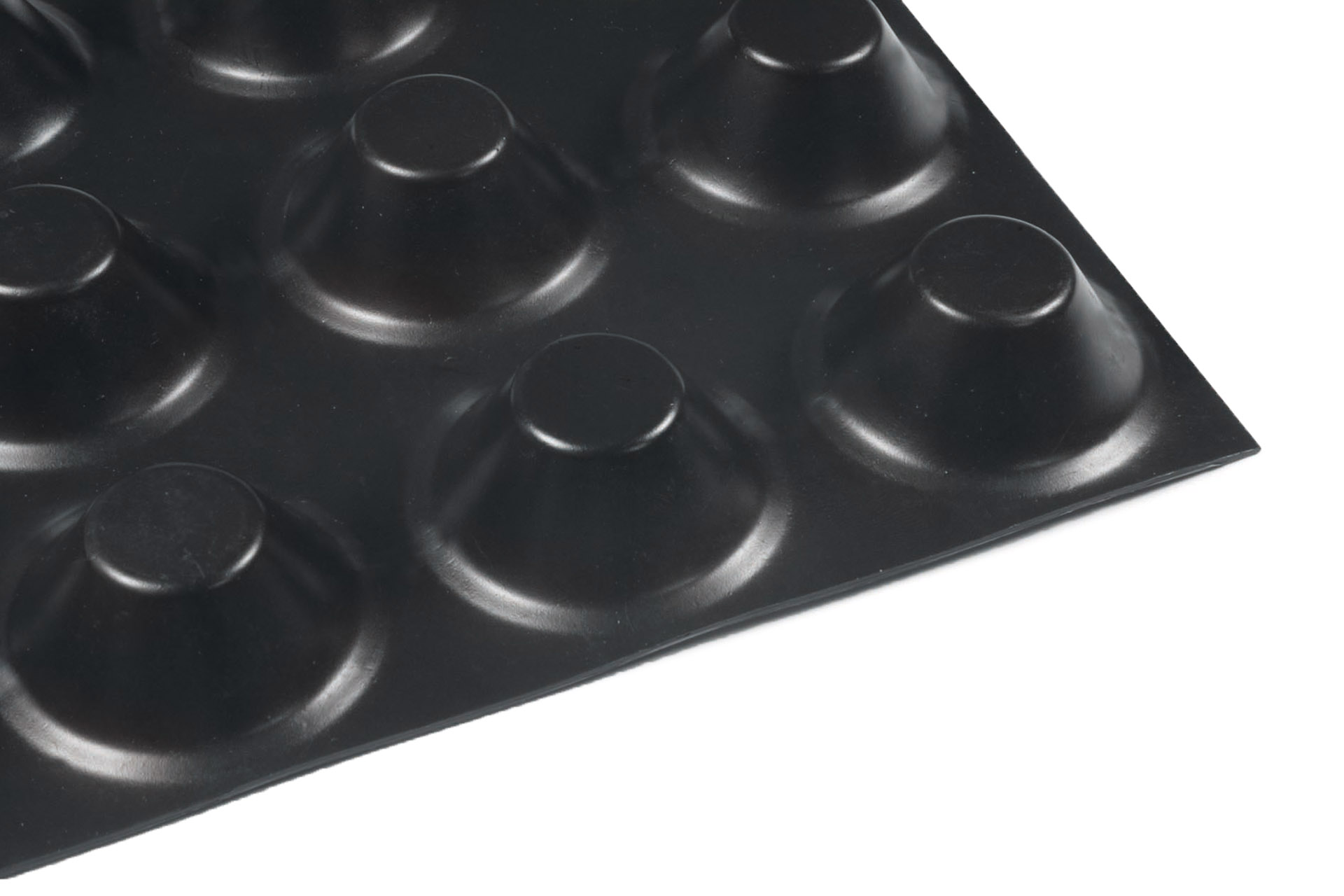 Membrana Bugnata 20 mm per Fondazioni e Opere interrate
