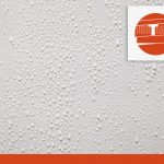 Damp Proofing vs Waterproofing